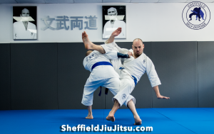 Private tuition Jiu jitsu